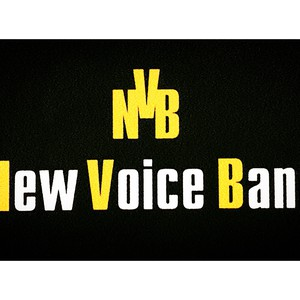 New Voice band, фото 2